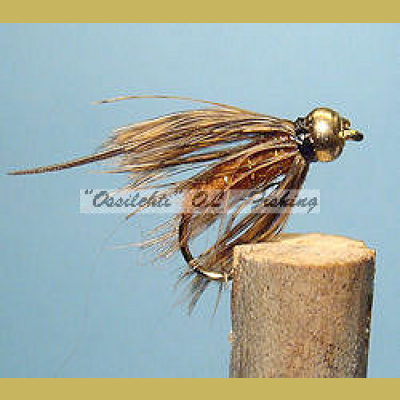 BH Caddis Pupa Brown