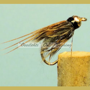 BH Caddis Pupa Dark Gray