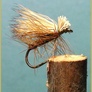 Elk Hair Caddis Olive perho