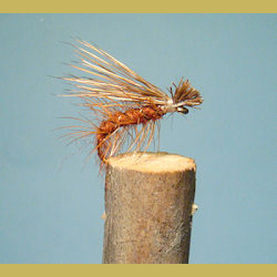 Elk Hair Caddis Brown perho