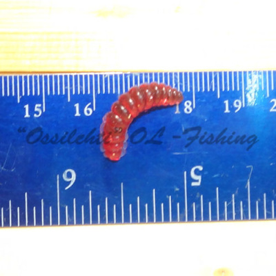 Larva maggot UV sensitive red size approx. 20 mm sold in 10 bags