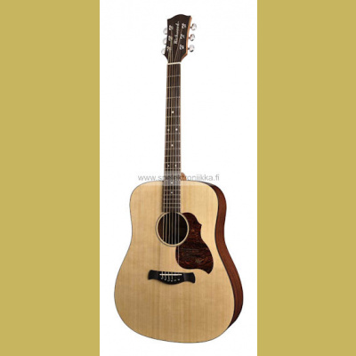 D-20 Richwood Master Series handmade dreadnought guitar