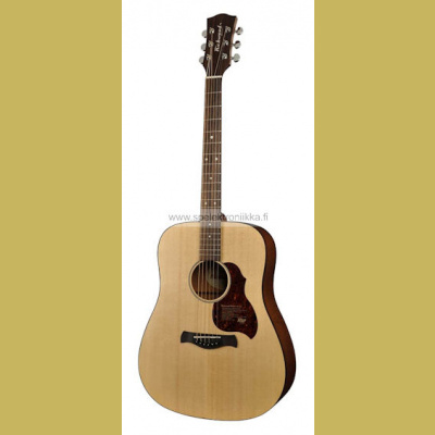 D-20-E with ISYS 601 Richwood Master Series handmade dreadnought guitar