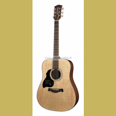 D-40L Richwood Master Series handmade lefthanded dreadnought guitar