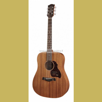D-50 Richwood Master Series handmade dreadnought guitar