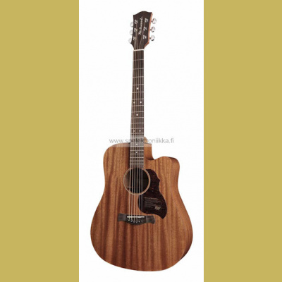 D-50-CE with ISYS 601 Richwood Master Series handmade dreadnought guitar