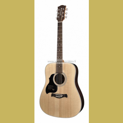 D-60L Richwood Master Series handmade lefthanded dreadnought guitar