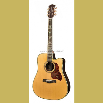 D-70-CEVA Richwood Master Series handmade dreadnought guitar