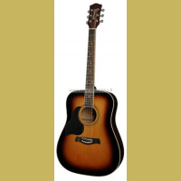 RD-12L-SB Richwood lefthanded acoustic guitar dreadnought model die cast machine