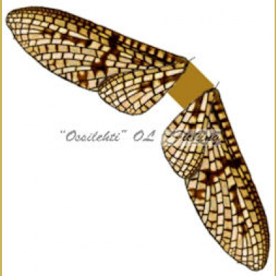 Spinner Wings Mayfly SMW 005 Brown S 10kpl