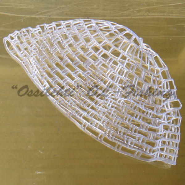 Ghost clear rubber net Catch & Release TFH®