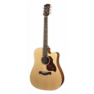 D-20-CE with ISYS 601 Richwood Master Series handmade dreadnought guitar
