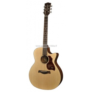 G-20-CE with ISYS 601 Richwood Master Series handmade grand auditorium guitar