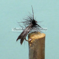 Black Sedge #12