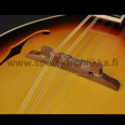 Mandoliini Richwood Master series A -style with spruce top vintage sunburst