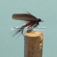 Wet Winged Fly Orange Body Dark Wings #10