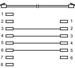 Antennitalous
